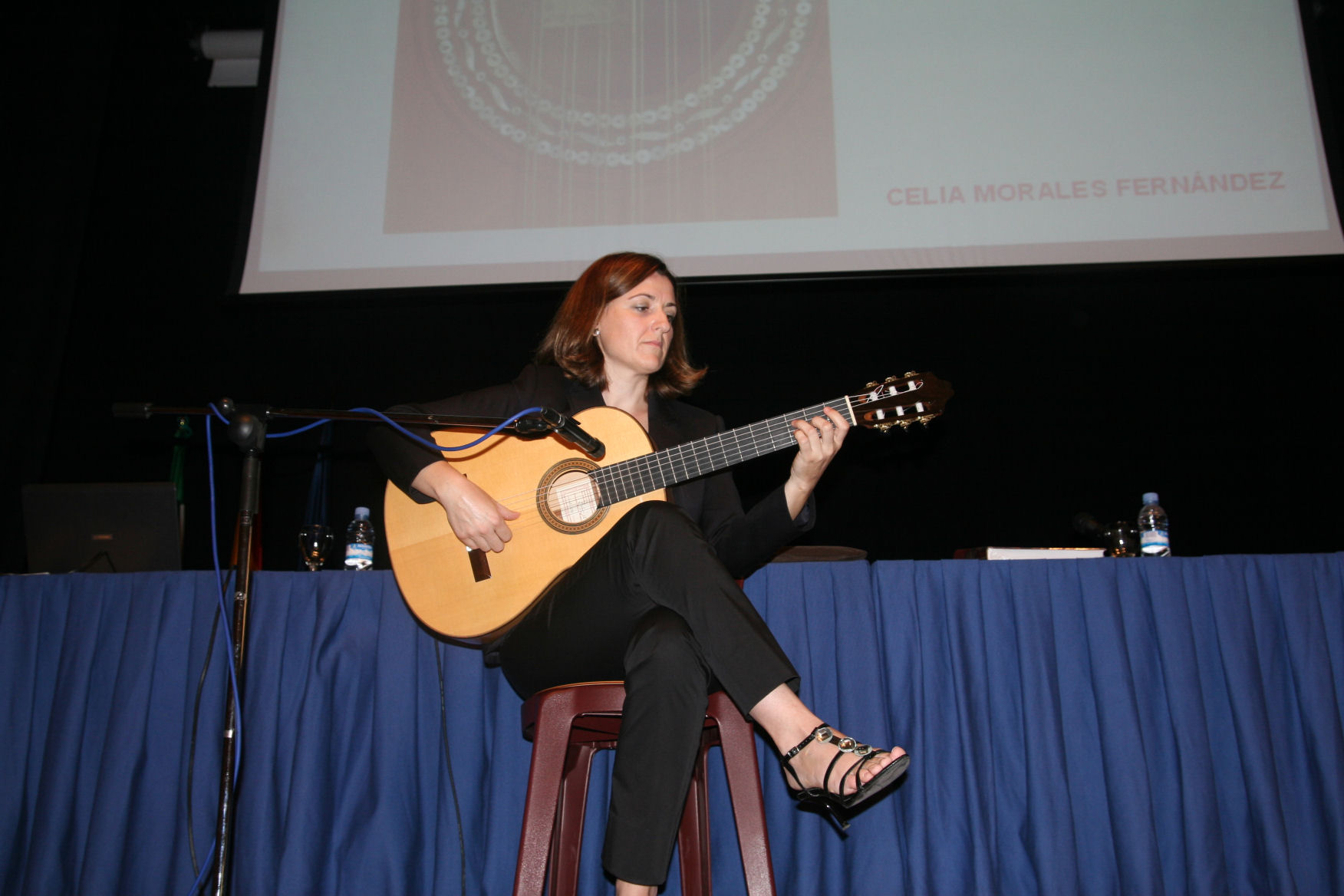 XXXVII-Congreso-Internacional-de-Flamenco-de-Mǭlaga.jpg